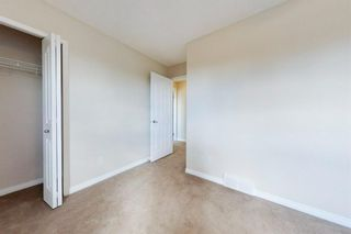 Photo 38: 103 Cranwell Close SE in Calgary: Cranston Detached for sale : MLS®# A1091052