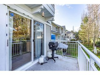 """Photo 31: 32 20890 57 Avenue in Langley: Langley City Townhouse for sale in """"Aspen Gables"""" : MLS®# R2541787"""