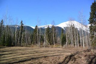 """Photo 31: 4365 LAKE KATHLYN Road in Smithers: Smithers - Rural House for sale in """"Lake Kathlyn"""" (Smithers And Area (Zone 54))  : MLS®# R2557275"""