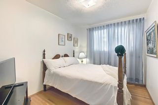 Photo 19: 2415 Vista Crescent NE in Calgary: Vista Heights Detached for sale : MLS®# A1144899