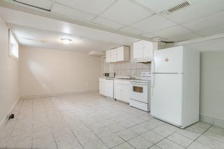 Photo 24: 42 STIRLING Road in Edmonton: Zone 27 House for sale : MLS®# E4252891