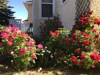 Photo 37: 107 CORAL KEYS Green NE in Calgary: Coral Springs House for sale : MLS®# C4078748