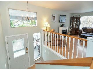 Photo 14: 21695 EXETER Avenue in Maple Ridge: West Central House for sale : MLS®# V1046694