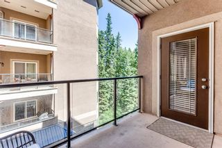 Photo 9: 317 30 Discovery Ridge Close SW in Calgary: Discovery Ridge Apartment for sale : MLS®# A1125482