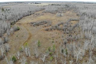 Photo 19: 68055 Beaver Creek Road in Whitemouth Rm: Whitemouth Residential for sale (R18)  : MLS®# 202026463