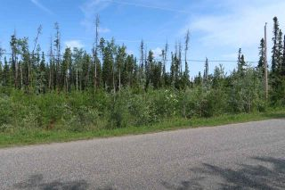 Photo 5: LOT 2 GUEST Road: Cluculz Lake Land for sale (PG Rural West (Zone 77))  : MLS®# R2449861