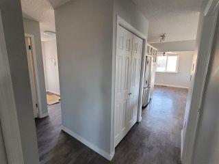 Photo 9: 3419 136 Avenue in Edmonton: Zone 35 House for sale : MLS®# E4241717