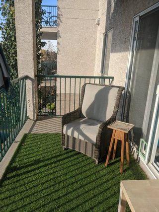 Photo 10: 310, 11325 83 Street in Edmonton: Condo for rent
