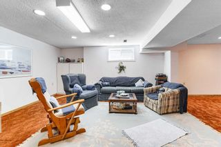Photo 35: 2525 Pollard Drive in Mississauga: Erindale House (2-Storey) for sale : MLS®# W4887592
