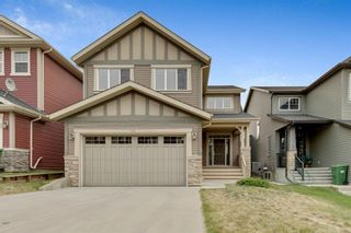 Photo 39: 245 Evanspark Circle NW in Calgary: Evanston Detached for sale : MLS®# A1138778