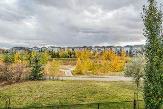 Photo 50: 36 Auburn Springs Cove SE in Calgary: Auburn Bay Detached for sale : MLS®# A1150528