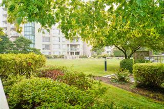 """Photo 32: 103 1189 EASTWOOD Street in Coquitlam: North Coquitlam Condo for sale in """"Cartier"""" : MLS®# R2497835"""
