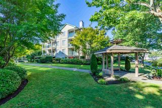 """Photo 29: 408 20433 53 Avenue in Langley: Langley City Condo for sale in """"COUNTRYSIDE ESTATES"""" : MLS®# R2492366"""