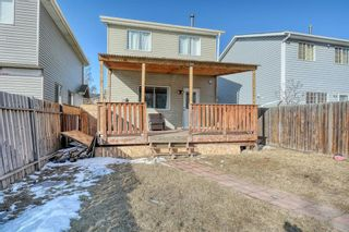 Photo 38: 375 Falshire Way NE in Calgary: Falconridge Detached for sale : MLS®# A1089444