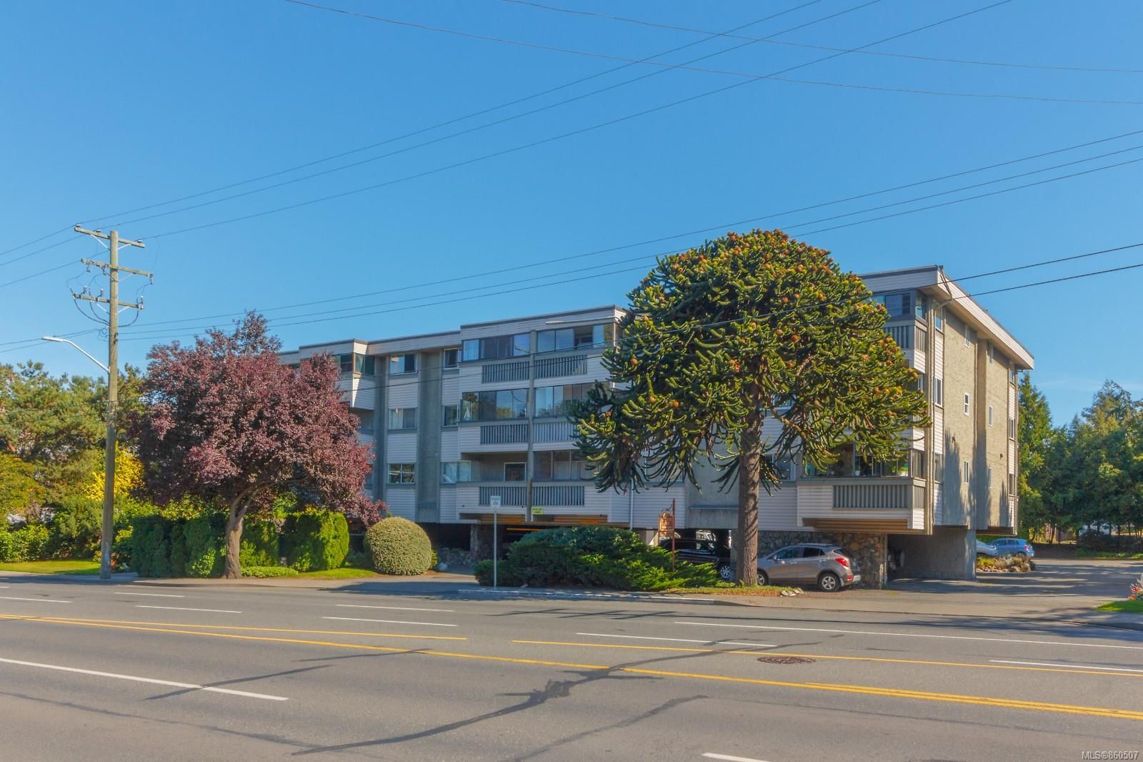 Main Photo: 306 1525 Hillside Ave in : Vi Oaklands Condo for sale (Victoria)  : MLS®# 860507
