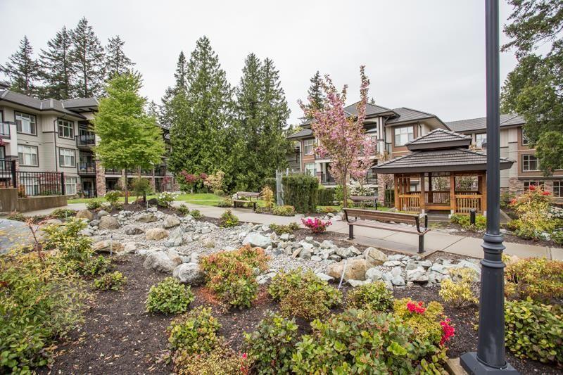 """Photo 30: Photos: 211 15185 36 Avenue in Surrey: Morgan Creek Condo for sale in """"EDGEWATER"""" (South Surrey White Rock)  : MLS®# R2580730"""