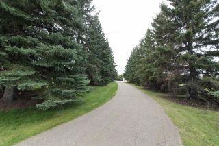 Photo 2: 18951 121 Avenue in Edmonton: Zone 40 House for sale : MLS®# E4239592
