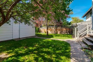 Photo 39: 509 ALEXANDER Crescent NW in Calgary: Rosedale Detached for sale : MLS®# A1091236
