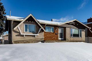 Photo 49: 9431 75 Street in Edmonton: Zone 18 House for sale : MLS®# E4228047