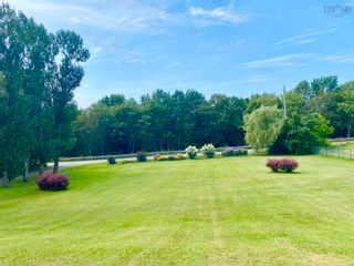 Photo 23: 812 Durham Road in Scotsburn: 108-Rural Pictou County Residential for sale (Northern Region)  : MLS®# 202122165