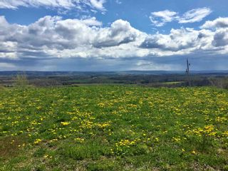 Photo 12: 808 Morden Road in Weltons Corner: 404-Kings County Vacant Land for sale (Annapolis Valley)  : MLS®# 202102895