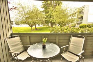 "Photo 15: 113 3451 SPRINGFIELD Drive in Richmond: Steveston North Condo for sale in ""ADMIRAL COURT"" : MLS®# R2216857"