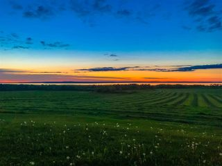 Photo 30: 273 Gospel Road in Brow Of The Mountain: 404-Kings County Farm for sale (Annapolis Valley)  : MLS®# 202019844
