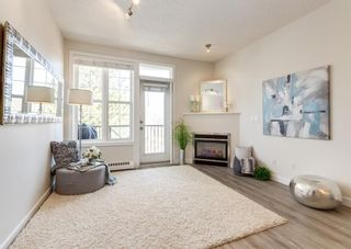 Photo 9: 205 208 Holy Cross Lane SW in Calgary: Mission Apartment for sale : MLS®# A1093875