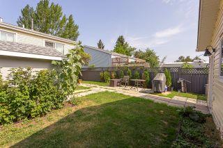 Photo 34: 4215 36 Avenue in Edmonton: Zone 29 House Half Duplex for sale : MLS®# E4259081