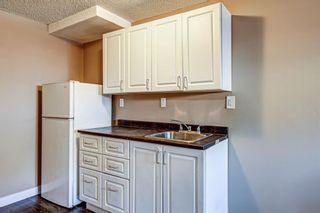 Photo 34: 165 Castlebrook Way NE in Calgary: Castleridge Semi Detached for sale : MLS®# A1107491