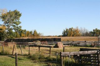 Photo 6: RR 220 And HWY 18: Rural Thorhild County House for sale : MLS®# E4227750