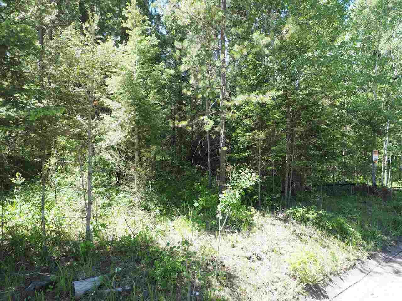 Photo 7: Photos: LOT 9 EASZEE Drive in 108 Mile Ranch: 108 Ranch Land for sale (100 Mile House (Zone 10))  : MLS®# R2467252