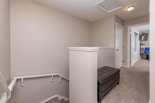 Photo 19: 59 Evansview Gardens NW in Calgary: Evanston Residential for sale : MLS®# A1071112