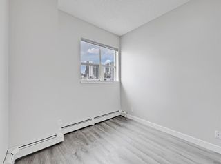 Photo 18: 301 1053 10 Street SW in Calgary: Beltline Apartment for sale : MLS®# A1103553
