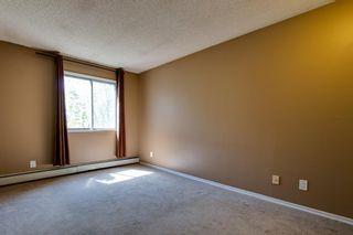 Photo 14: 303 10432 76 Avenue NW in Edmonton: Zone 15 Condo for sale : MLS®# E4262439