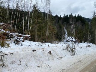 Photo 11: 950 DUNN LAKE ROAD: Clearwater Lots/Acreage for sale (North East)  : MLS®# 160128