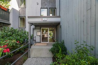 Photo 21: 128 200 WESTHILL Place in Port Moody: College Park PM Condo for sale : MLS®# R2589699