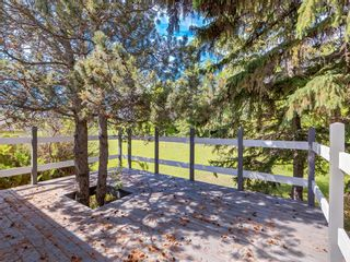 Photo 44: 22445 Macleod Trail SW: Calgary Detached for sale : MLS®# A1080565