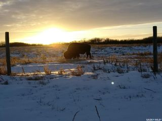 Photo 30: 1 Buffalo Springs Road in Montrose: Lot/Land for sale (Montrose Rm No. 315)  : MLS®# SK860349