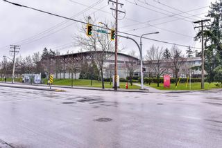 Photo 20: 3 12585 72 ave in Surrey: West Newton Townhouse for sale : MLS®# R2234294