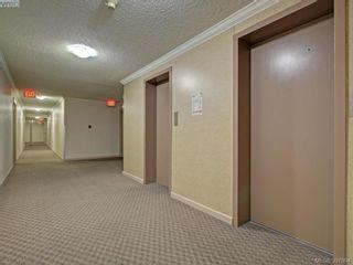 Photo 19: 117 3225 Eldon Pl in VICTORIA: SW Rudd Park Condo for sale (Saanich West)  : MLS®# 796231