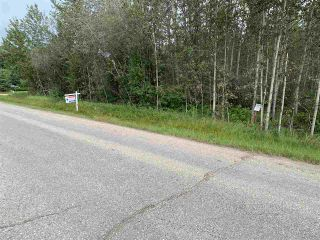 Photo 11: King St & 2nd Ave: Rural Parkland County Rural Land/Vacant Lot for sale : MLS®# E4171458