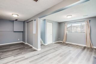 Photo 21: 11 Emberdale Way SE: Airdrie Detached for sale : MLS®# A1124079