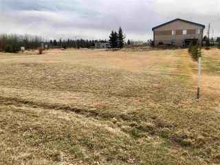 Photo 5: 30 Village Creek Estates: Rural Wetaskiwin County Rural Land/Vacant Lot for sale : MLS®# E4241750