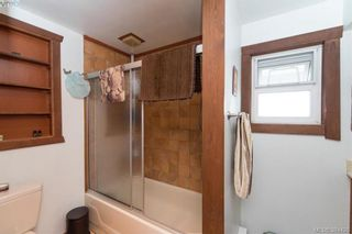 Photo 7: 319 Walter Ave in VICTORIA: SW Gorge House for sale (Saanich West)  : MLS®# 790759