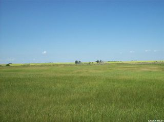 Photo 5: Eagle Creek Acreage 80 Acres in Asquith: Lot/Land for sale : MLS®# SK863384