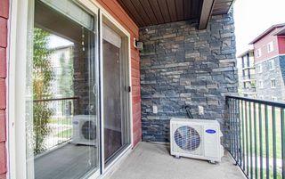 Photo 17: 215 1060 McConachie Boulevard in Edmonton: Zone 03 Condo for sale : MLS®# E4257715