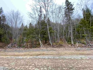 Photo 9: Lot 7 Lower Grant Road in Chester Basin: 405-Lunenburg County Vacant Land for sale (South Shore)  : MLS®# 202110749