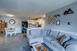 Photo 19: 2011 2000 Edenwold Heights in Calgary: Edgemont Apartment for sale : MLS®# A1142475
