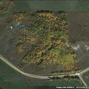 Photo 21: TWP ROAD 492 RANGE ROAD 234: Rural Leduc County Rural Land/Vacant Lot for sale : MLS®# E4263215